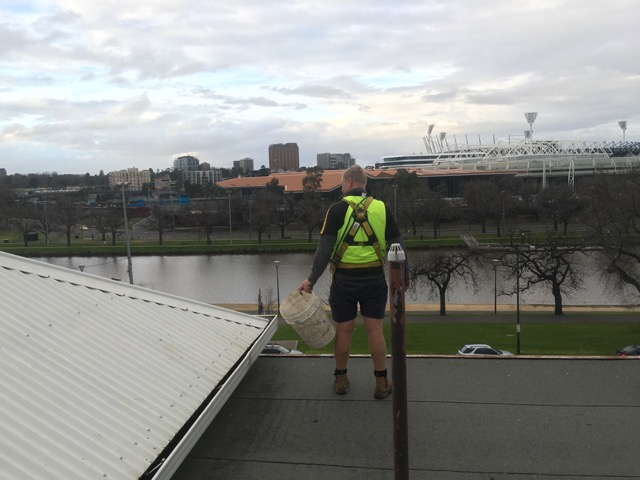 Roof SIde Cleaners