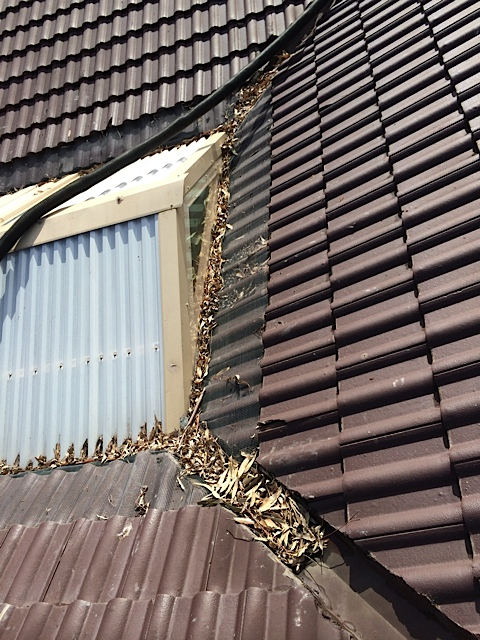 Pergola Gutters Ozwide Gutters Cleaning Melbourne Amp Berwick