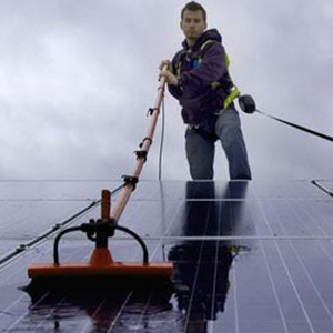 Solar Panel Cleaning and Bird Proofing