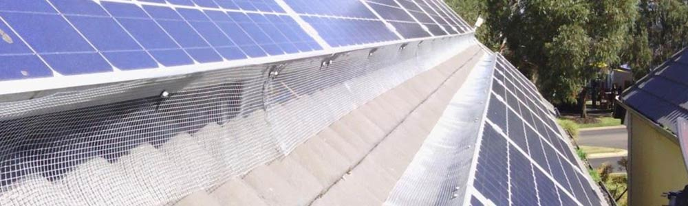 solar_panel_cleaning1
